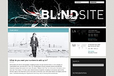 Blind (screenshot)
