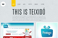 Teixido web design inspiration